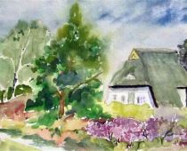 Hiddensee - Heiderose (Aquarell)