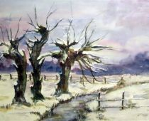 Weiden im Winter (Aquarell)